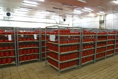 De opslag van de kaas in zuivelfabriek stock fotografie