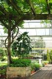 De opslag van de tuin Stock Fotografie
