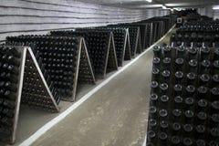 De opslag van mousserende wijn in een wijnkelder Stock Afbeeldingen