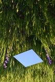De Optische illusie van de spiegelkubus stock afbeeldingen