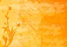 De oranje achtergrond van Grunge met bloemenmotieven Stock Afbeeldingen