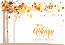De oranje banner van de herfstbomen royalty-vrije illustratie