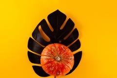 De oranje decoratieve pompoen van Halloween op een met de hand geschilderde zwarte monstera royalty-vrije stock afbeelding