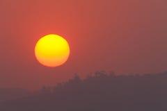 De oranje Horizontale Bomen van de Zonsondergang Royalty-vrije Stock Afbeeldingen