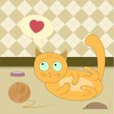 De oranje kat wil spelen Royalty-vrije Stock Foto's