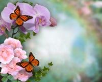 De orchideeën en de rozenachtergrond van vlinders Royalty-vrije Stock Afbeelding