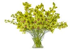 De Orchideeën van Cymbidium in een Vaas Stock Afbeelding