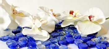 De orchideeën van Wellness royalty-vrije stock afbeelding
