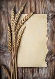 De Oren van de tarwe royalty-vrije stock foto's