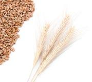 De oren van de tarwe en tarwekorrels stock foto