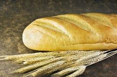 De oren van het brood en van de tarwe royalty-vrije stock foto