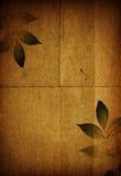 De organische collage van de herfst Royalty-vrije Stock Foto
