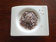 De organische gezonde rode wilde rijst van Bario Stock Afbeelding