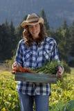 De organische Landbouw Stock Afbeelding