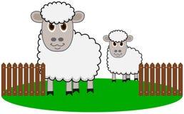 De organische schapen landbouw Stock Foto