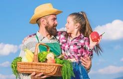 De organische slechts en verse gebaarde rustieke landbouwer van de oogstmens met jong geitje Vader en dochter de oogstgroenten va stock foto