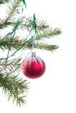 De ornamenten van de kerstboom. stock fotografie