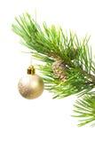 De ornamenten van de kerstboom. stock foto's