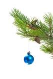 De ornamenten van de kerstboom. stock afbeeldingen