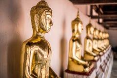 De oro de las estatuas de Buda en la adoración de Wat Thai Temple Fotos de archivo libres de regalías