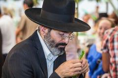 De orthodoxe mensen in zwarte hoed kiest citrusvrucht Stock Afbeelding