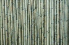 De oude achtergrond van de bamboemuur stock foto's