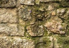 De oude achtergrond van de steenmuur, dichte omhooggaand van de bakstenen muur grunge textuur Stock Foto