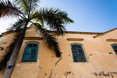 De oude afbrokkelende bouw met palm Stock Foto's