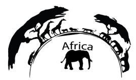 De oude Afrikaanse Stier van de Olifant Royalty-vrije Stock Afbeelding
