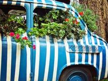 De oude auto wordt gebruikt als bed voor tuinbloemen Royalty-vrije Stock Afbeeldingen