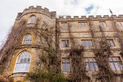 De oude bouw met droge klimop op voorgevel in Somerset Royalty-vrije Stock Afbeelding