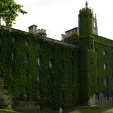 De oude die bouw in Engeland met groene bladeren is gegroeid stock foto's