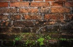 De oude donkere grens van de grungebakstenen muur Stock Afbeelding
