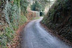De smalle weg van de landsteeg Stock Fotografie
