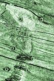De oude Doorstane Gebarsten Geknoopte Textuur van Kelly Green Pine Wood Floorboards Grunge stock foto's