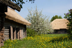 De oude dorpshuizen en de tot bloei komende bomen stock fotografie