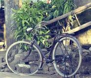 De oude fiets van Java Stock Foto's