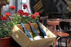 De oude Fles van de Wijn Stock Afbeeldingen