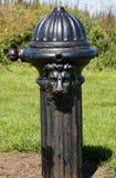 De oude Fontein van het Ijzer Openbare Drinkwater stock afbeelding