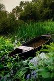 De oude gedaalde boot in het struikgewas van de rivier royalty-vrije stock foto's