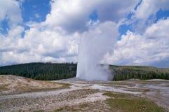 De Oude Gelovige geiser van Yellowstone stock foto