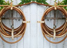 De oude het water geven slang hangt op de concrete muur Royalty-vrije Stock Fotografie