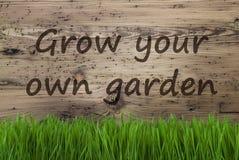 De oude Houten Achtergrond, Gras, kweekt Uw Eigen Tuin Stock Afbeeldingen