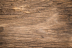 De oude houten achtergrond van de textuur Royalty-vrije Stock Afbeelding