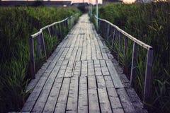 De oude houten brug over een kleine ondiepe rivier stroomt in estuarium van de Zwarte Zee Houten bruglood in het riet verdwijnend Royalty-vrije Stock Foto's