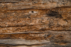 de oude houten raad bruin met donkere geschubde vlekken, toont vele lagen stock foto
