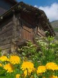 De oude Hut van het Plattelandshuisje in de Zomer stock afbeeldingen
