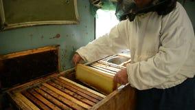 De oude imker houdt een kader met honingraat en honing in de ruimte waar de kaders met was en honing worden opgeslagen stock footage