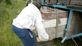 De oude imker neemt de bijenkorf van de aanhangwagen stock videobeelden