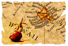 De oude kaart van Honolulu Royalty-vrije Stock Fotografie